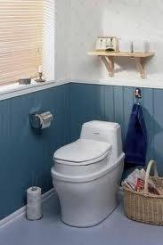 19 ноември е световен официален празник на тоалетната.