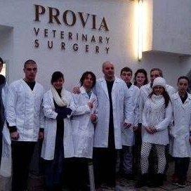 P R O V I A  клиника за домашни любимци
