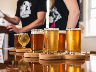 Билки в бирата повишават антиоксидантната й способност