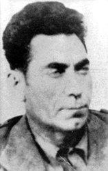 Тодор Ангелов (Божаната)