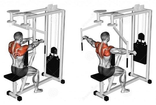14 Упражнения за Гърди със собствена тежест + Тренировка