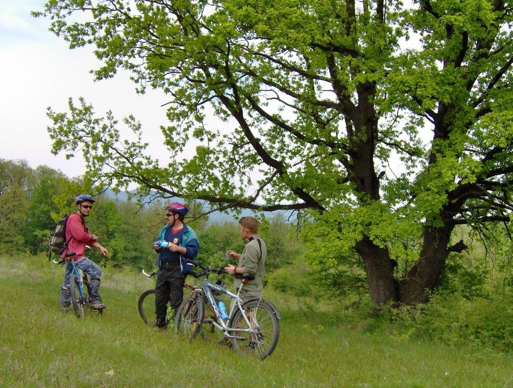 Велосипедни маршрути
